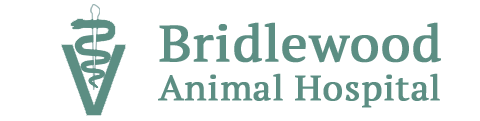 Bridlewood Animal Hospital